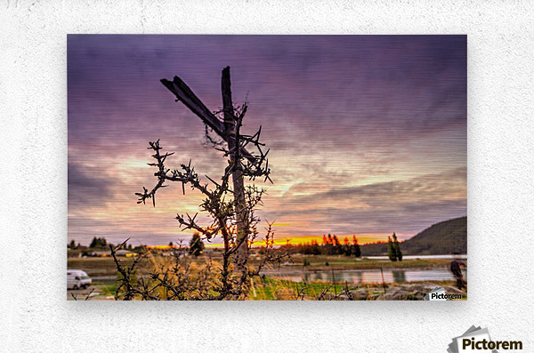 Crusifix on the cross  Metal print