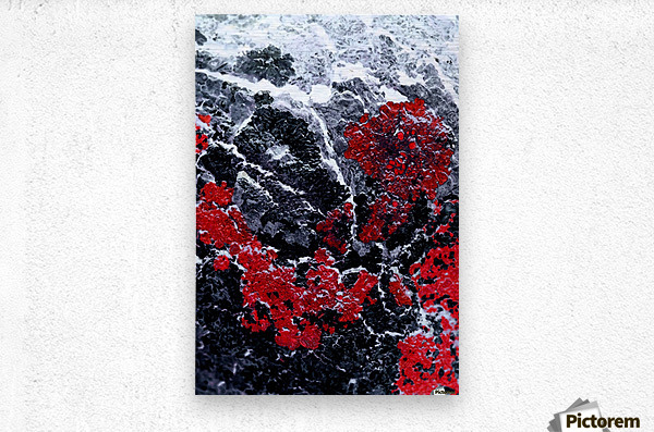Red Cliff  Metal print