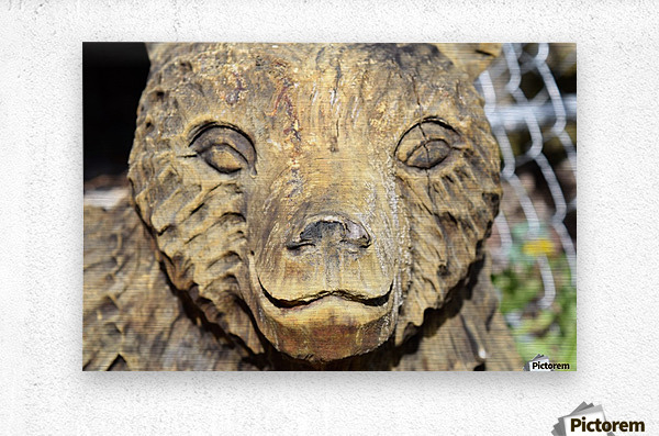 The Animal Totem   Metal print