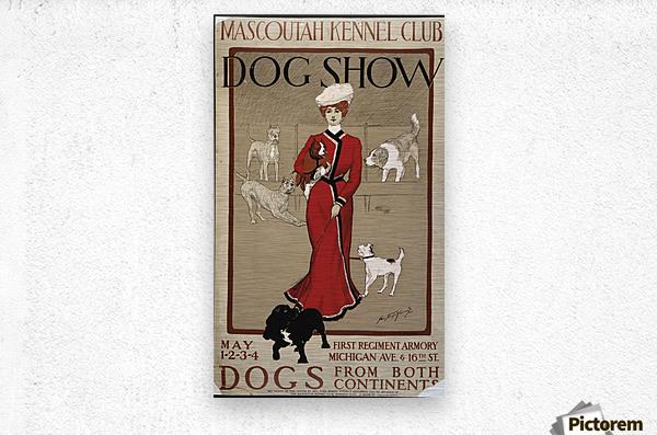 Dog Show  Metal print