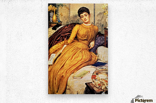 Mary Constance Wyndham  Metal print