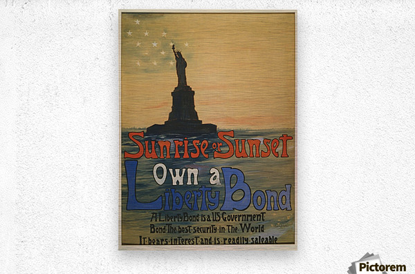 Own a liberty bond  Metal print