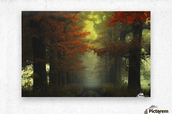 Shaman_s road on the other side  Metal print