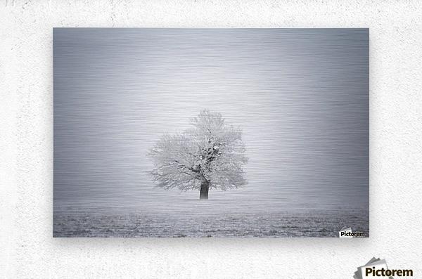 White solitude and light  Metal print
