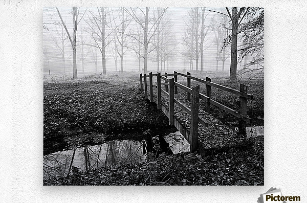 Misty Day  Metal print