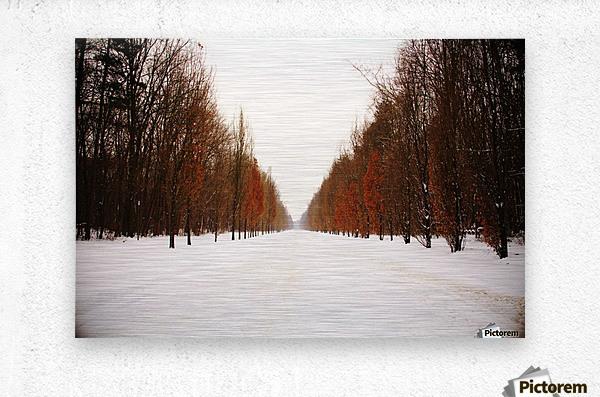 Snowy winter road  Metal print