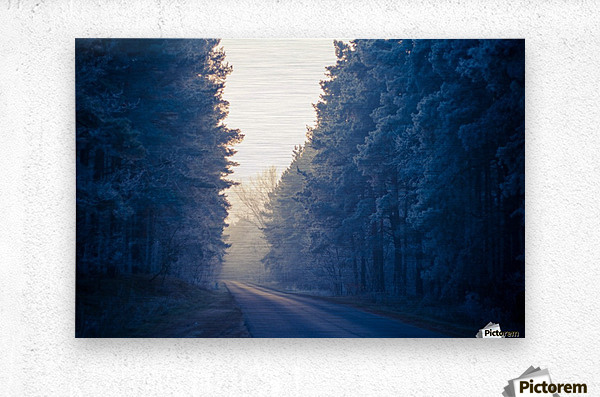 Winter road  Metal print