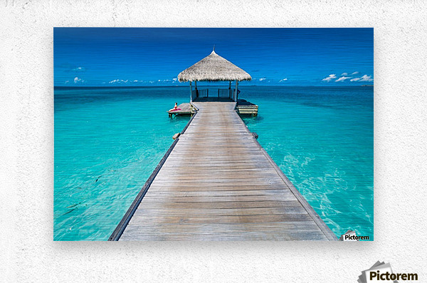 View of water bungalow in tropical island, Maldives, Indian ocean  Metal print
