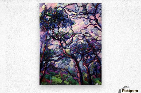 Meyendel - 26-02-15  Metal print