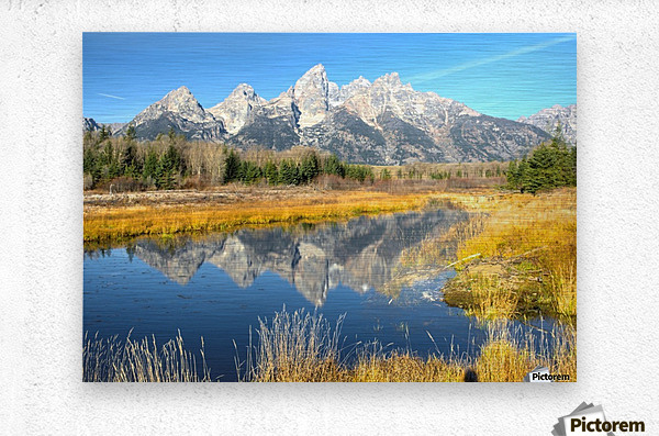 Beavers View of Tetons  Metal print