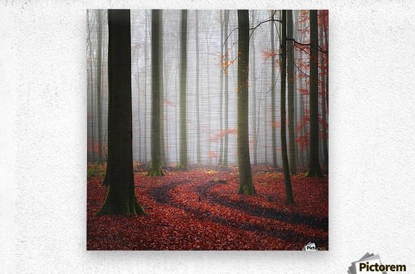 Autumnal Tracks  Metal print