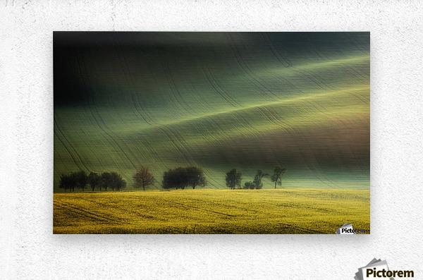 spring fields  Metal print