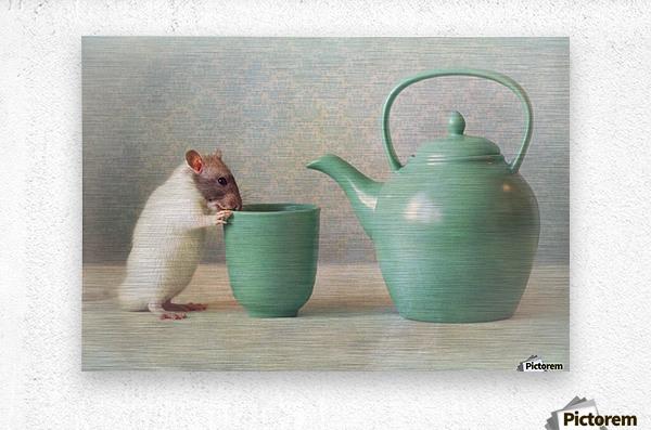 The Teapot  Metal print