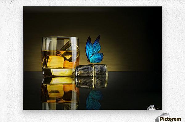 Butterfly Drink  Metal print