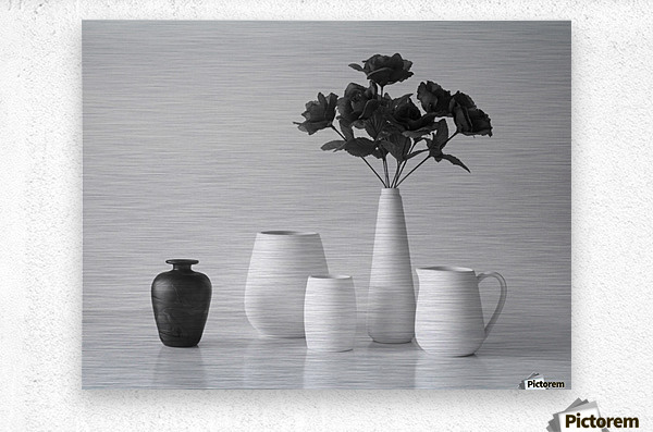Still Life in Black and White  Metal print