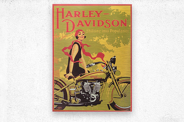 1929 Harley Davidson Shifting into Popularity  Metal print