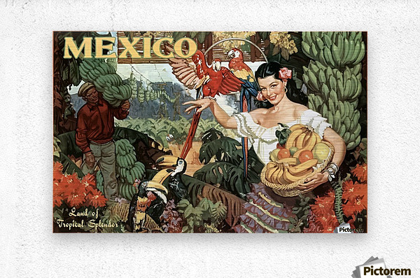 Mexico Land of Tropical Splendor  Metal print