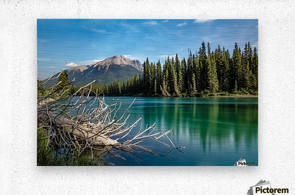 Summer Bow river  Metal print