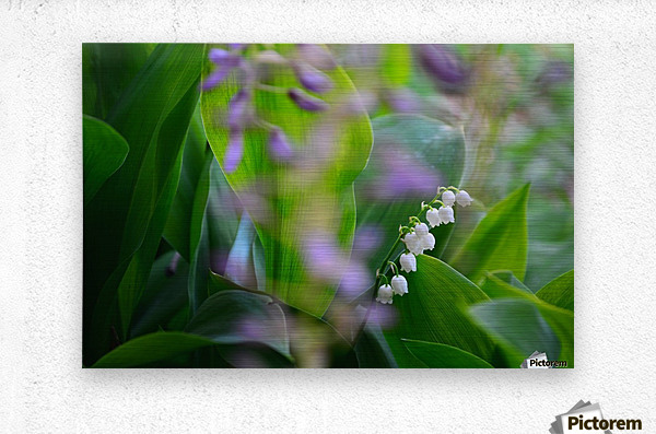 Spring dream  Metal print
