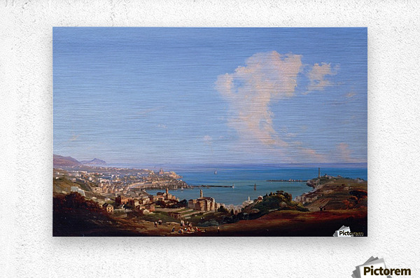 View of Rome from Monte Mario, 1857  Metal print