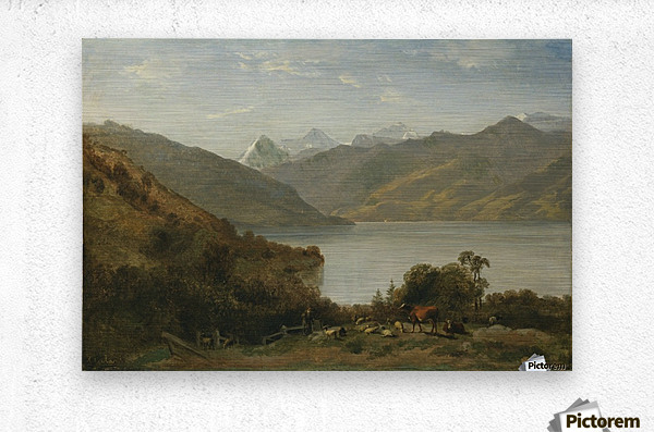 Landscape with a lake and animals  Metal print