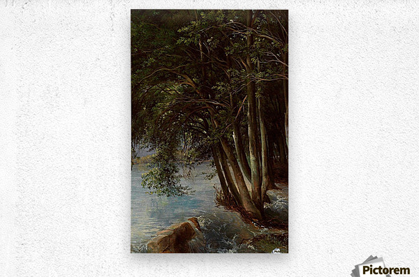 A lovely forest  Metal print