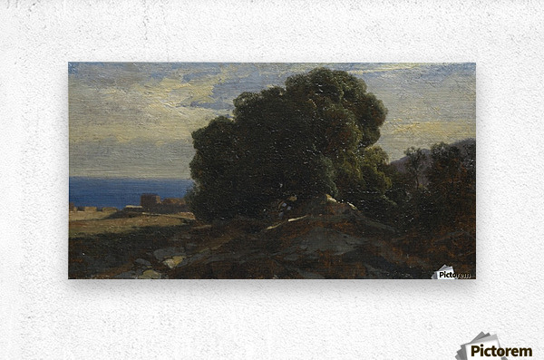 A large tree by the sea  Metal print
