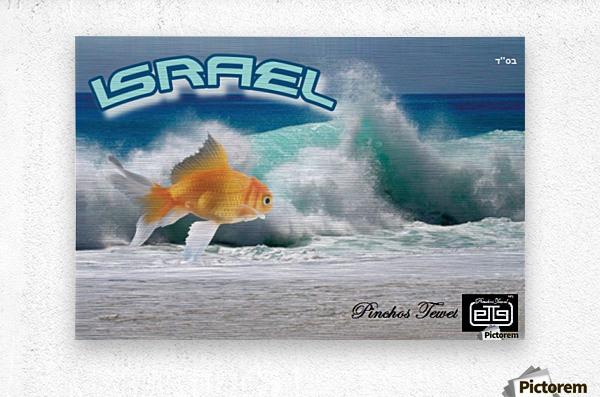 art israel ocean  2  Metal print