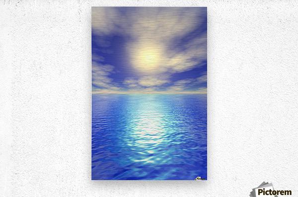 Scenic Ocean View  Metal print