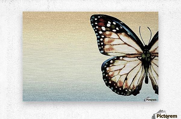 Artistic Butterfly  Metal print