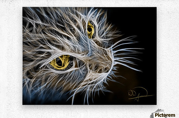 Cat Abstracto  Metal print