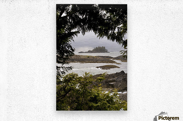 Coastal Scenery, Tofino, British Columbia, Canada  Metal print