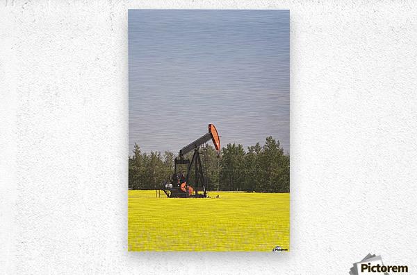 Alberta, Canada; Pump Jack In A Flowering Canola Field  Metal print