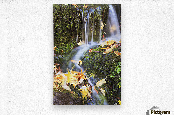 Oregon Cascades, Oregon, Usa  Metal print