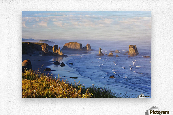 Fog Covers Rock Formations Along The Coast At Bandon State Park; Bandon, Oregon, United States of America  Metal print