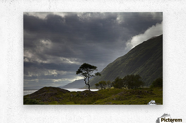 Dark Clouds Over A Landscape Along The Coast; Ardnamurchan, Argyll, Scotland  Metal print
