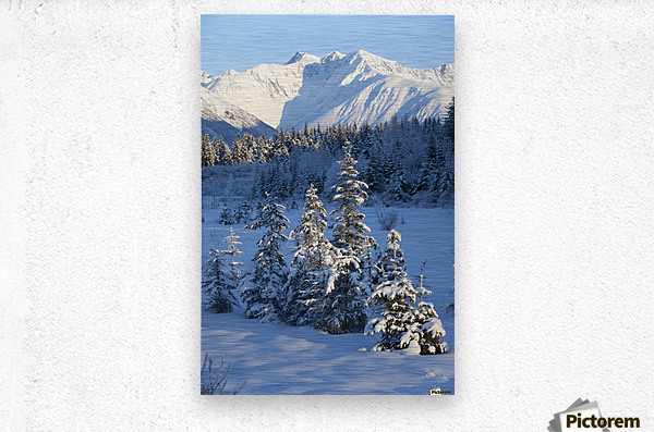 Scenic View Of Chugach Mountains And Snowcovered Landscape, Southcentral Alaska, Winter  Metal print