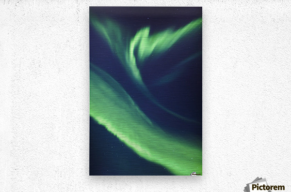 A green northern lights corona in the sky above the tony knowles coastal trail in winter;Anchorage alaska united states of america  Metal print