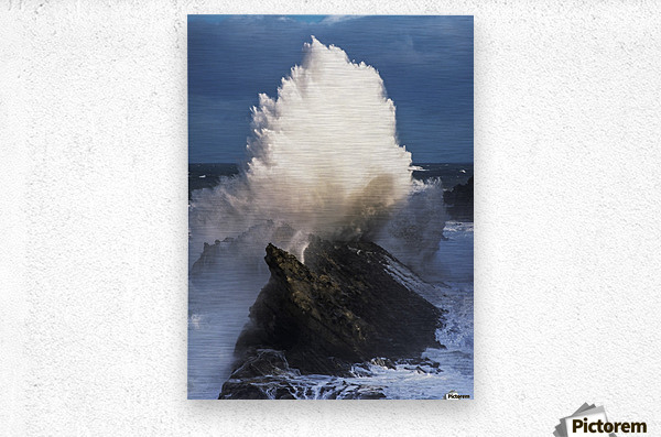 Surf erupts on the rocks at Shore Acres State Park; Charleston, Oregon, United States of America  Metal print