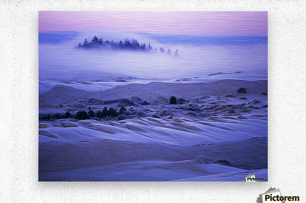 Fog over the sand dunes at dawn after a heavy frost; Lakeside, Oregon, United States of America  Metal print
