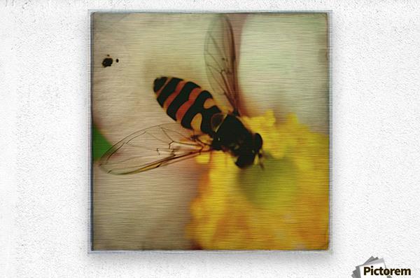 Bee-ing  Metal print