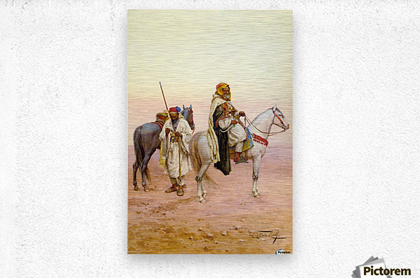 A rest in the desert  Metal print