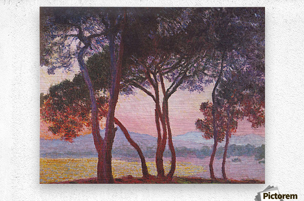 Juan les Pins by Monet  Metal print