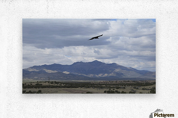 Mountains overlooking Highway 1  VP2  Metal print
