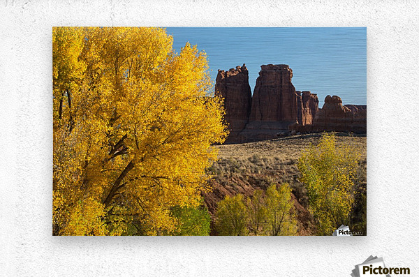 Fall at Courthouse Wash  Metal print