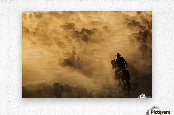 Western cowboys riding horses, roping wild horses - MIRICA DAN ...