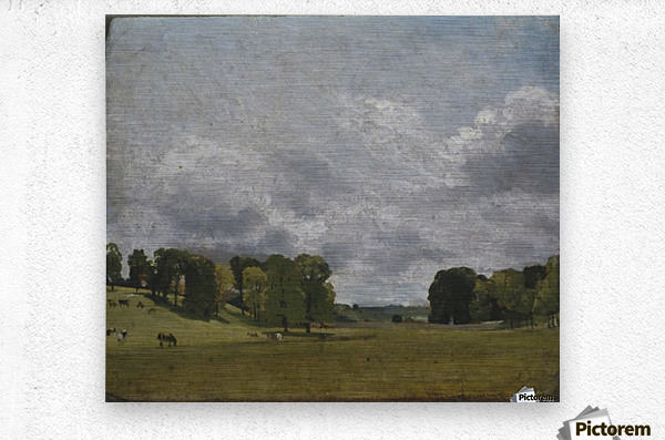 View at Epsom  Metal print