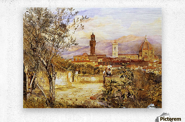 View of the Duomo fro the Mozzi Garden Florence 1877  Metal print