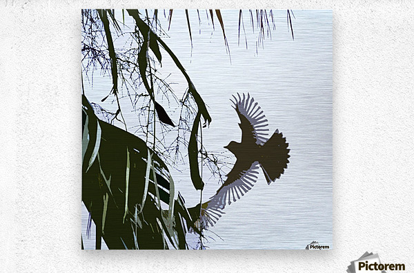 Orioles Abstract 2   Metal print