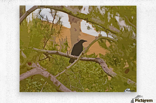 One Raven In Tree abstract 1  Metal print